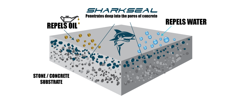 shark-seal-how-it-works