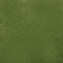 Green Concrete Color Stain
